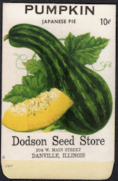 #CE155 - Unusual and Rare Japanese Pie Pumpkin Dodson 10¢ Seed Pack