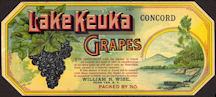 #ZLSG063 - 1890s Lake Keuka Concord Grape Label