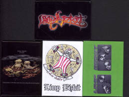 ##MUSICBG0057 - Group of 3 Different Limp Bizkit Refrigerator Magnets