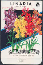 #CE012 - Brilliantly Colored Lone Star Seed Company Linaria Bouquet 10¢ Seed Pack - As Low As 50¢ each