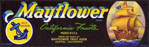 #ZLSG044 - Mayflower Grape Crate Label
