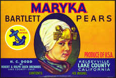 #ZLCA*034 - Large Maryka Bartlett Pears Crate Label