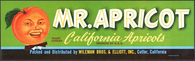 #ZLCA*072 - Mr. Apricot Crate Label - Cutler, CA