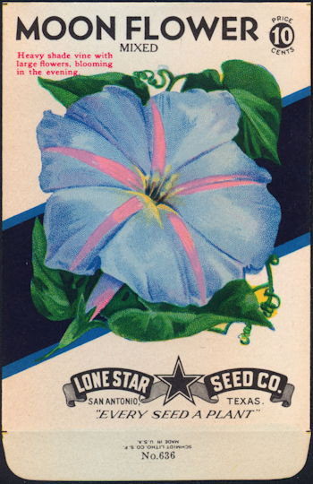 #CE017 - Brilliant Colored Mixed Moon flower Lone Star 10¢ Seed Pack - As Low As 50¢ each