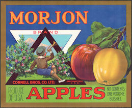 #ZLSH014 - Group of 12 Morjon Brand Apple Crate Labels with Boy Blowing Horn