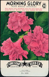 #CE017.1 - Rose Marie Double Morning Glory Lone Star 10¢ Seed Pack - As Low As 50¢ each