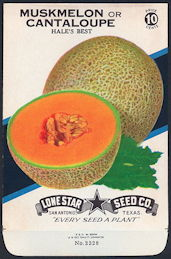 #CE061.1 - Group of 12 Brilliantly Colored Hale's Best Cantaloupe (Muskmelon) Lone Star 10¢ Seed Packs