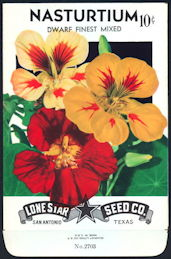 #CE018 - Brilliantly Colored Nasturtium Dwarf Lone Star 10¢ Seed Pack - As Low As 50¢ each