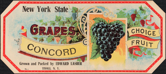 #ZLSG098 - Early New York State Concord Grapes Crate Label