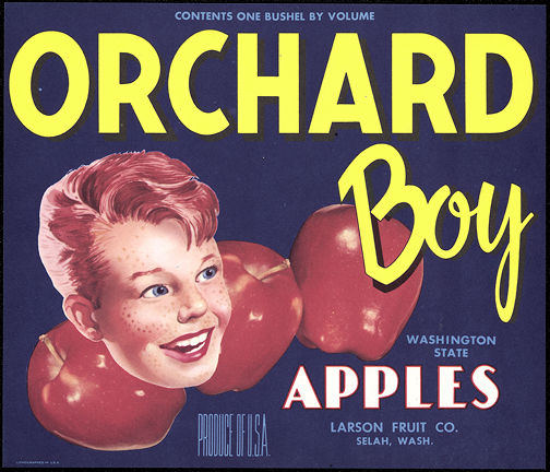 #ZLC243 - Orchard Boy Apple Crate Label