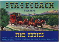 #ZLC187 - Stagecoach Fine Fruits Pear Crate Label - Green Version