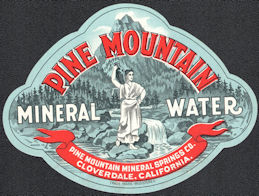 #ZLS250 - Rare Pine Mountain Mineral Water Bottle Label - Coverdale, CA