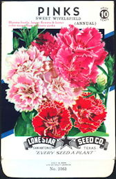 #CE024 - Brilliantly Colored Pinks Sweet Wivelsfield Lone Star 10¢ Seed Pack - As Low As 50¢ each
