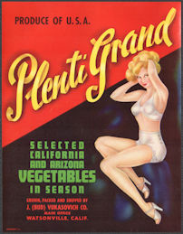 #ZLSH215 - Group of 12 Plenti Grand Pinup Vegetable Crate Labels