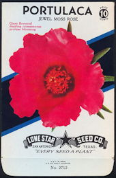 #CE027 - Brilliantly Colored Jewel Moss Rose Portulaca Lone Star 10¢ Seed Pack - As Low As 50¢ each