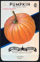 #CE072 Beautiful Pumpkin 10¢ Seed Pack - Nice Fall/Halloween Item - As low as 75¢ each