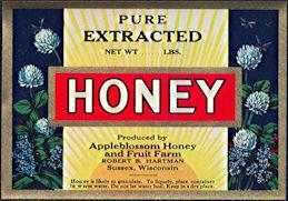 #ZBOT185 - Appleblossom Honey and Fruit Farm Honey Can/Tin Label