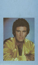 ##MUSICBP0031 - 1980s RIcky Nelson OTTO Cloth Backstage Tour Pass