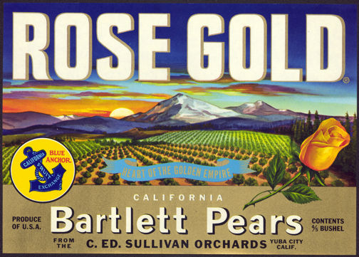 #ZLC300 - Rose Gold California Bartlett Pears Crate Label