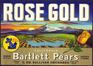 #ZLC300 - Rose Gold California Bartlett Pears Crate Label