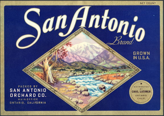 #ZLC143 - San Antonio Brand Valencia Orange Label