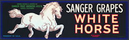 #ZLSG090 - Sanger White Horse Brand Grape Crate Label