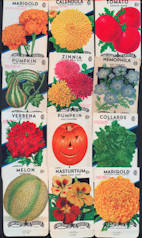 #CE088 - Set of 81 Different 5¢ and 10¢ Flower, Ornamental, Fruit, and Vegetable Seed Packs - Includes Jack-O-Lantern