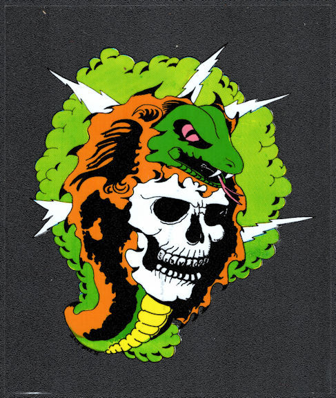 ##MUSICBP2027 - Grateful Dead Car Window Tour Sticker/Decal - Skull with Snake and Lightning Bolts