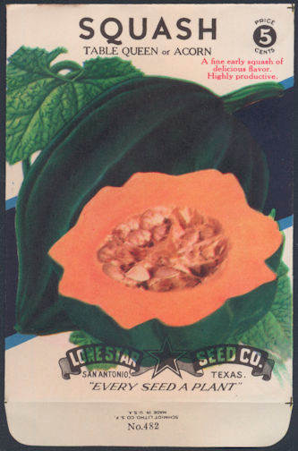 #CE076 - Brilliantly Colored  Stone Litho Lone Star Seed Company Acorn Squash 5¢ Seed Pack - As Low As 50¢ each