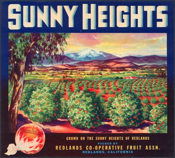 #ZLC155 - Sunny Heights Sunkist Orange Crate Label