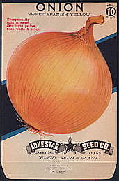 #CE065 - Brilliantly Colored Sweet Spanish Yellow Onion Lone Star 10¢ Seed Pack - As Low As 50¢ each