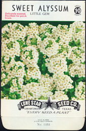 #CE002 - Sweet Alyssum Little Gem Lone Star 10¢ Seed Pack - As Low As 50¢ each