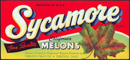#ZLC378 - Sycamore California Melons Crate Label
