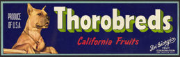 #ZLSG045 - Thorobreds Grape Crate Label - Boxer Dog