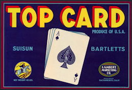 #ZLC416 - Top Card Suisun Bartletts Pear Crate Label - Ace of Spades
