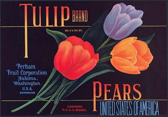 #ZLC400 - Tulip Brand Pear Crate Label