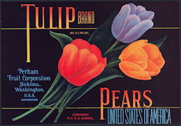 #ZLC400 - Tulip Brand Pear Crate Label