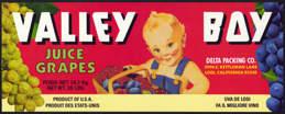 #ZLSG056 - Valley Boy Grape Crate Label