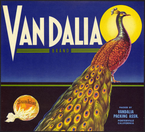 #ZLC287 - Vandalia Sunkist Orange Fruit Crate Label - Peacock