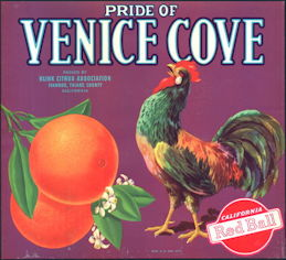 #ZLC095 - Venice Cove Crate Label with Rooster