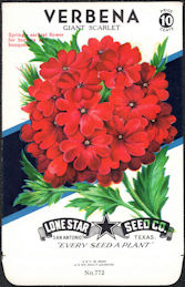 #CE038 - Verbena Giant Scarlet Lone Star 10¢ Seed Pack - As Low As 50¢ each