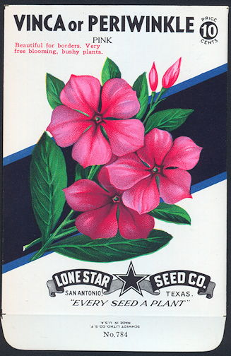 #CE039 - Brilliantly Colored Pink Periwinkle (Vinca) Lone Star 10¢ Seed Pack - As Low As 50¢ each