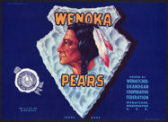 #ZLC292 - Wenoka Pears Crate Label - Indian
