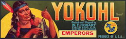 #ZLSG080 - Rare Yokohl Emperors Grape Crate Label - Indian