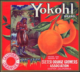 #ZLC181 - Yokohl Orange Crate Label