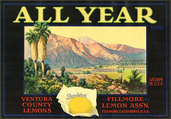 #ZLC467 - All Year Sunkist Lemon Crate Label - Fillmore, California