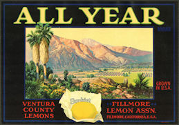 #ZLC467 - All Year Sunkist Lemon Crate Label - Fillmore, California
