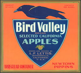 #ZLC172 - Bird Valley Apples Crate Label