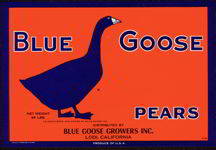 #ZLC149 - Blue Goose Pear Crate Label