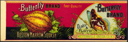 #ZLCA148.5 - Very Rare and Very early Butterfly Brand Boston Marrow Squash Can Label